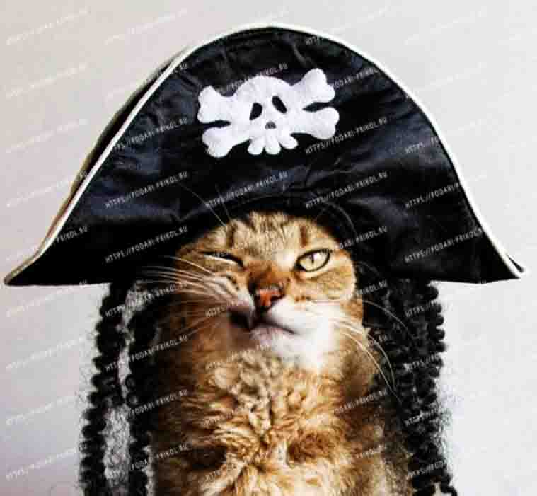 простая шляпа пирата